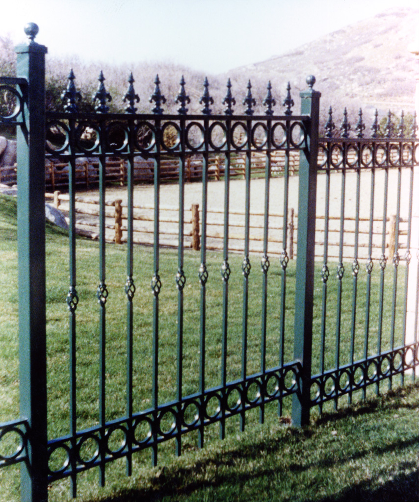 iron-anvil-fences-spear-top-double-rail-circles-fancy-spear-basket-circles-by-others-2-1
