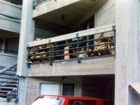 iron-anvil-railing-horizontal-pipe-xxxx25-park-city-1-1