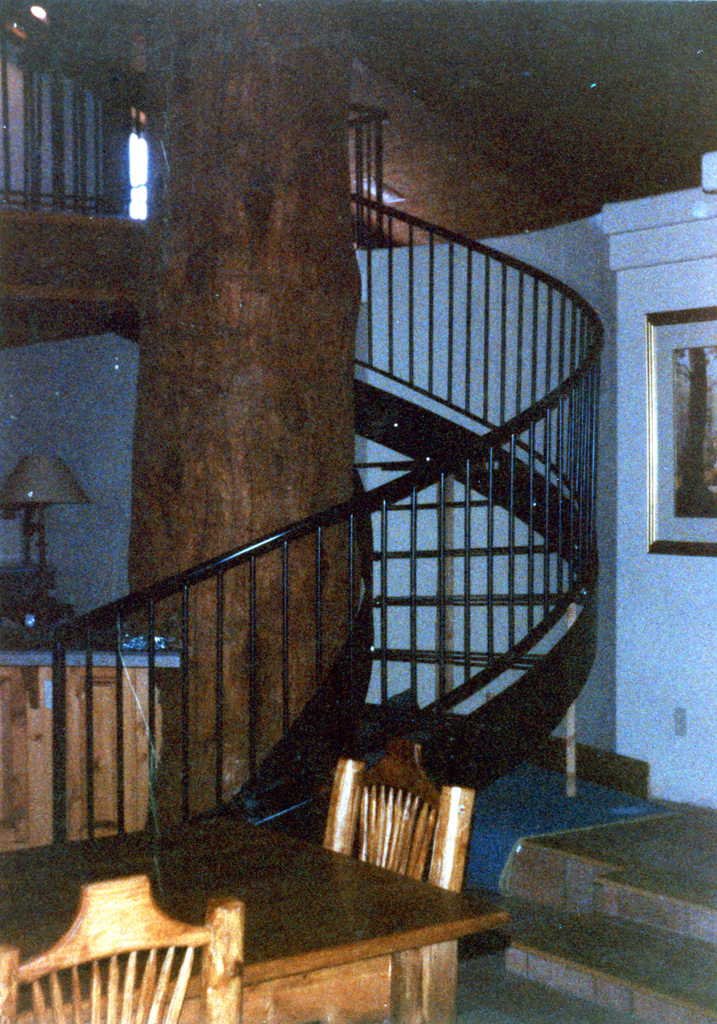iron-anvil-stairs-spiral-angle-iron-no-tread-around-a-tree-42-1050-mike-holmes-16