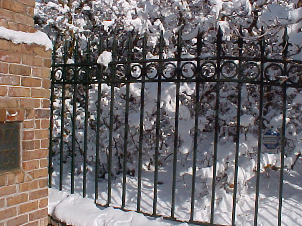 iron-anvil-fences-spear-top-double-rail-circles-f33-fence-wasatch-blvd-by-la-caille-big-rock
