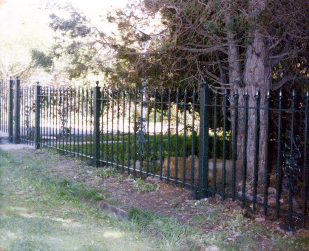 iron-anvil-fences-spear-top-single-rail-spear-218-pattern-in-panel