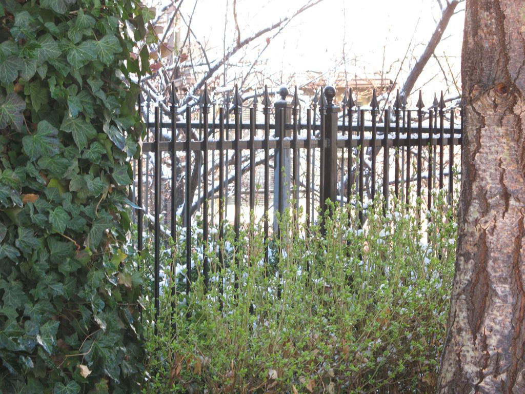 iron-anvil-fences-spear-top-single-rail-spear-freedman-14756