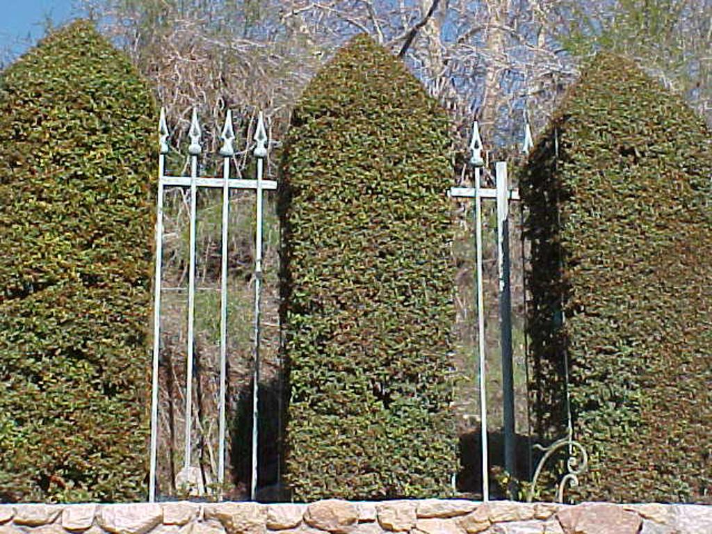 iron-anvil-fences-spear-top-single-rail-spear-keller-pool-fence-east-f28-1