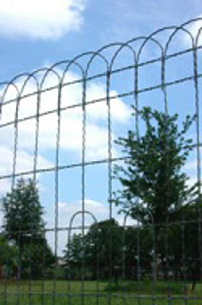 iron-anvil-fences-by-others-wire-loop-iron-anvil-fences-36-h-42-h-or-48-high