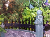 iron-anvil-fences-by-others-heavy-side-mount-1