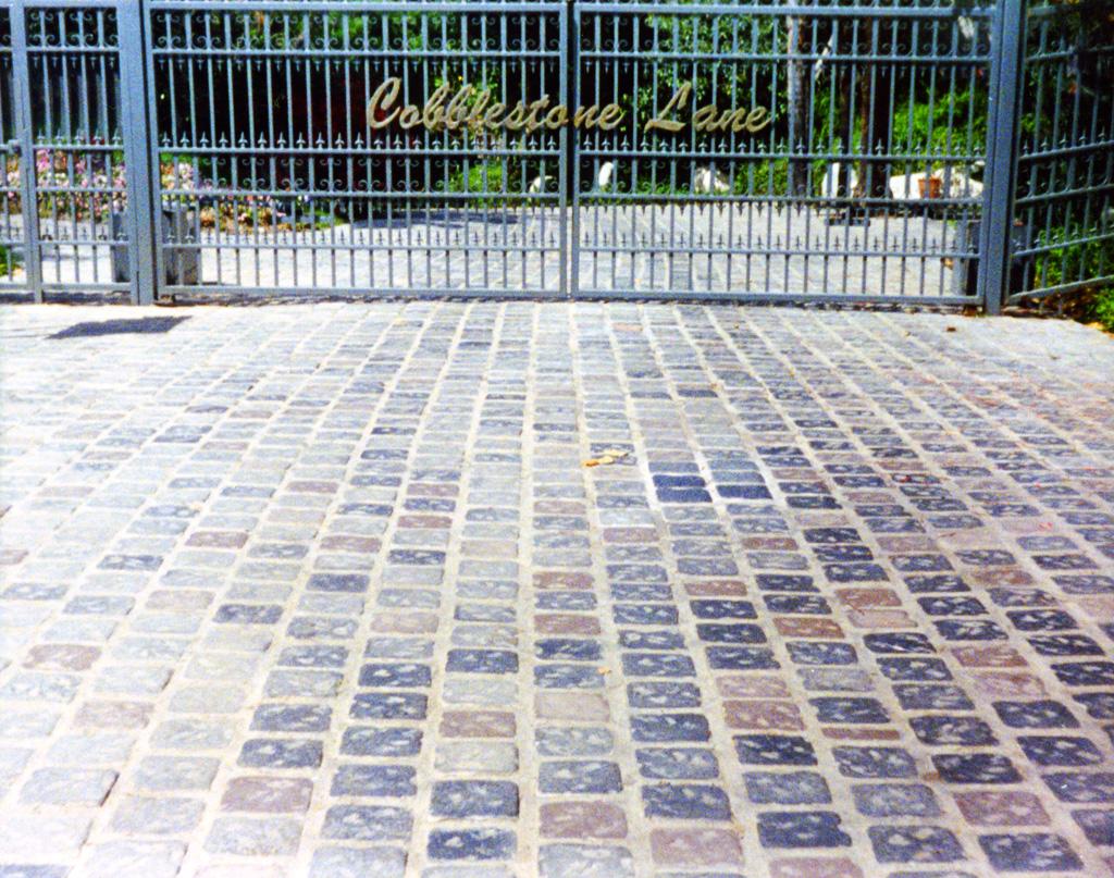 iron-anvil-gates-by-others-driveway-flat-cobblestone