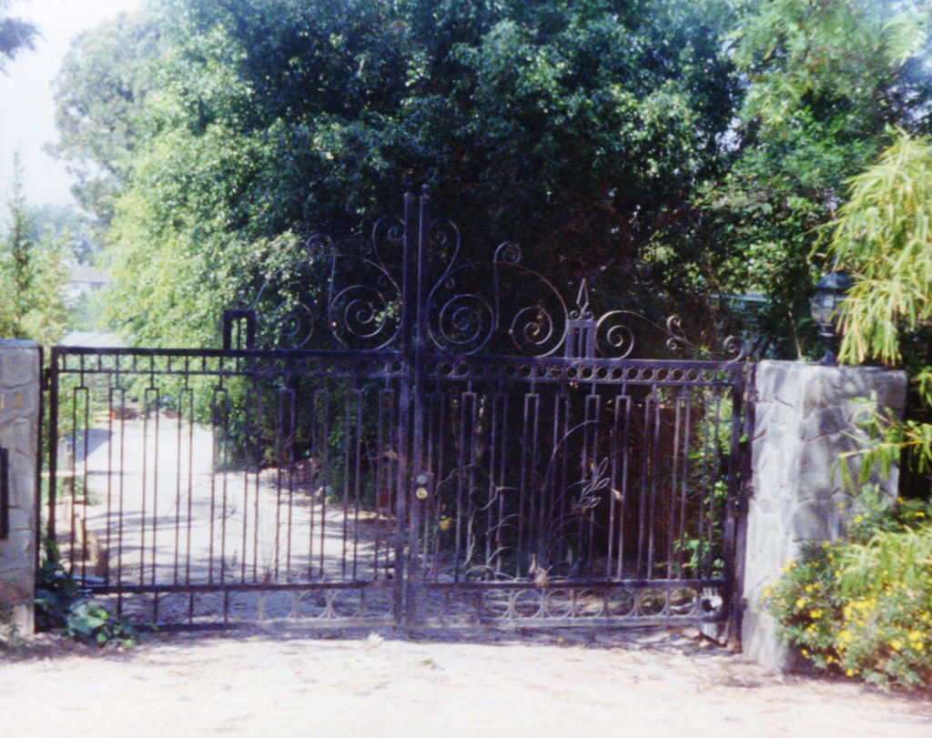 iron-anvil-gates-by-others-driveway-flat-iron