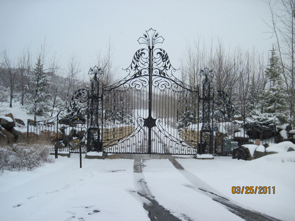 iron-anvil-gates-by-others-driveway-french-scoll-top-immigration-2