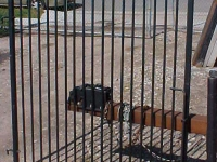iron-anvil-gates-man-flat-noreen