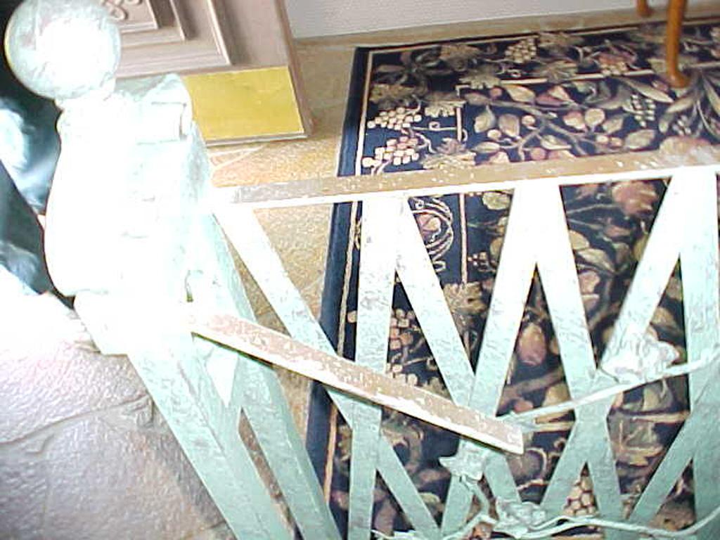 iron-anvil-railing-x-pattern-lattice-12-1075-finlinson-9
