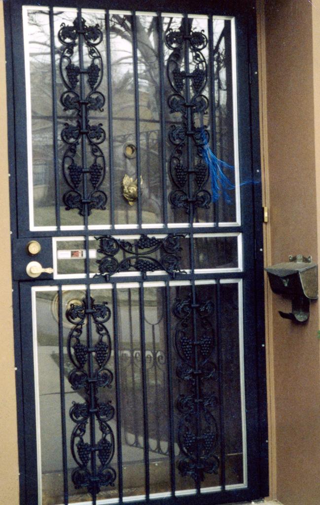 iron-anvil-security-doors-single-07