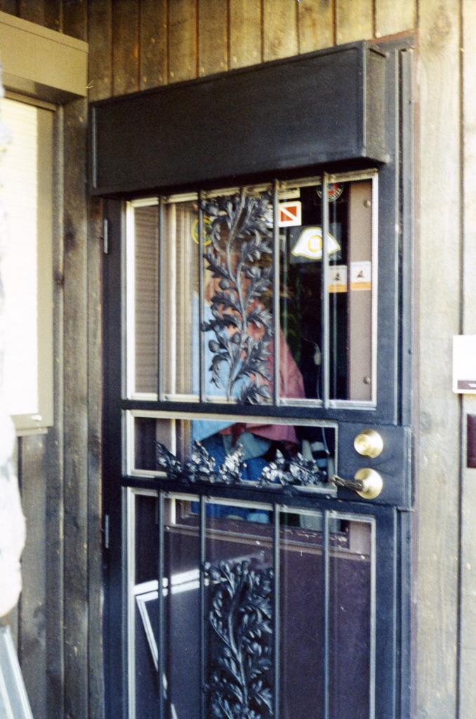 iron-anvil-security-doors-single-storm-door